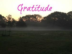 2014-01-07 Gratitude.jpg